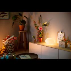 FLOURISH 40904/31/P7 LAMPA BIURKOWA LED HUE PHILIPS white and color ambience