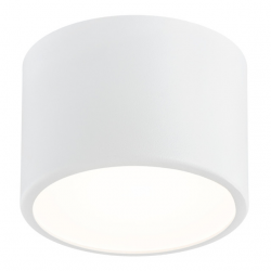 VICHY  3884  PLAFON, LAMPA SUFITOWA LUB ŚCIENNA ARGON